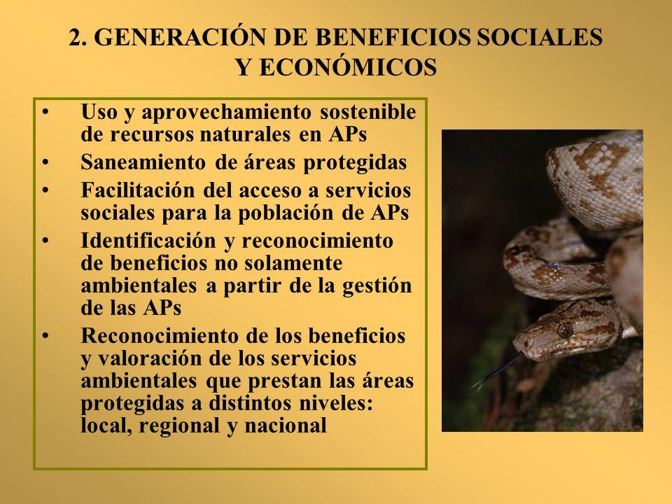 2. GENERACIÓN DE BENEFICIOS SOCIALES Y ECONÓMICOS