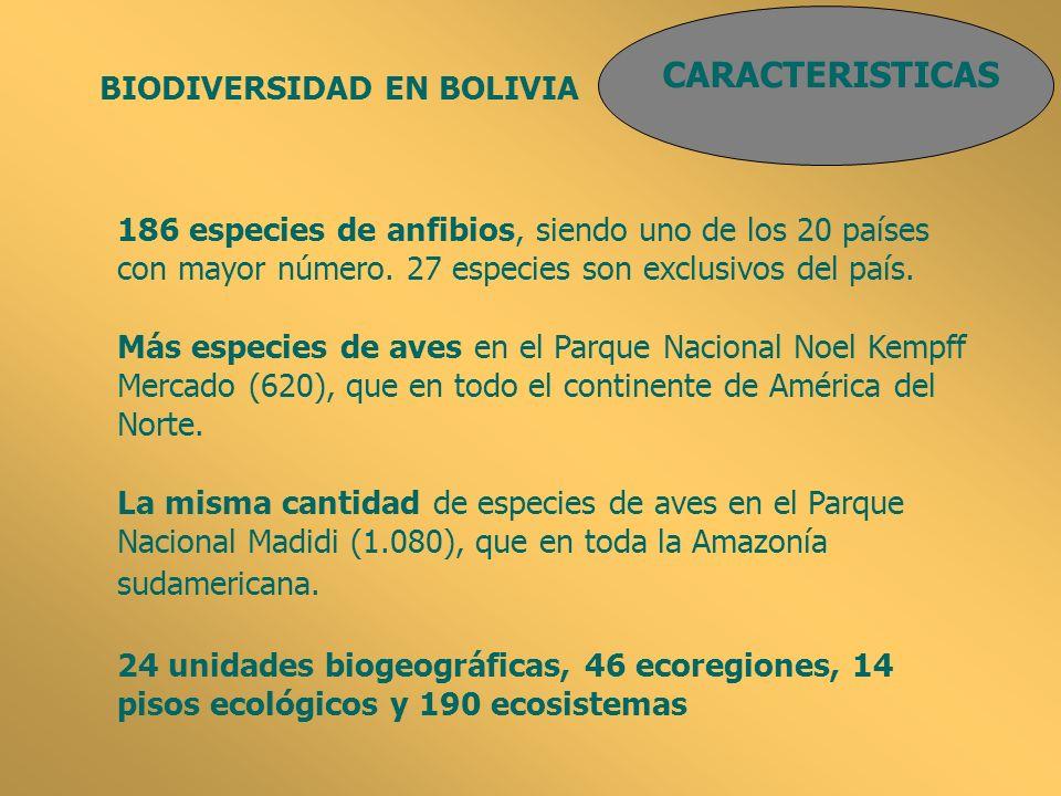 CARACTERISTICAS BIODIVERSIDAD EN BOLIVIA