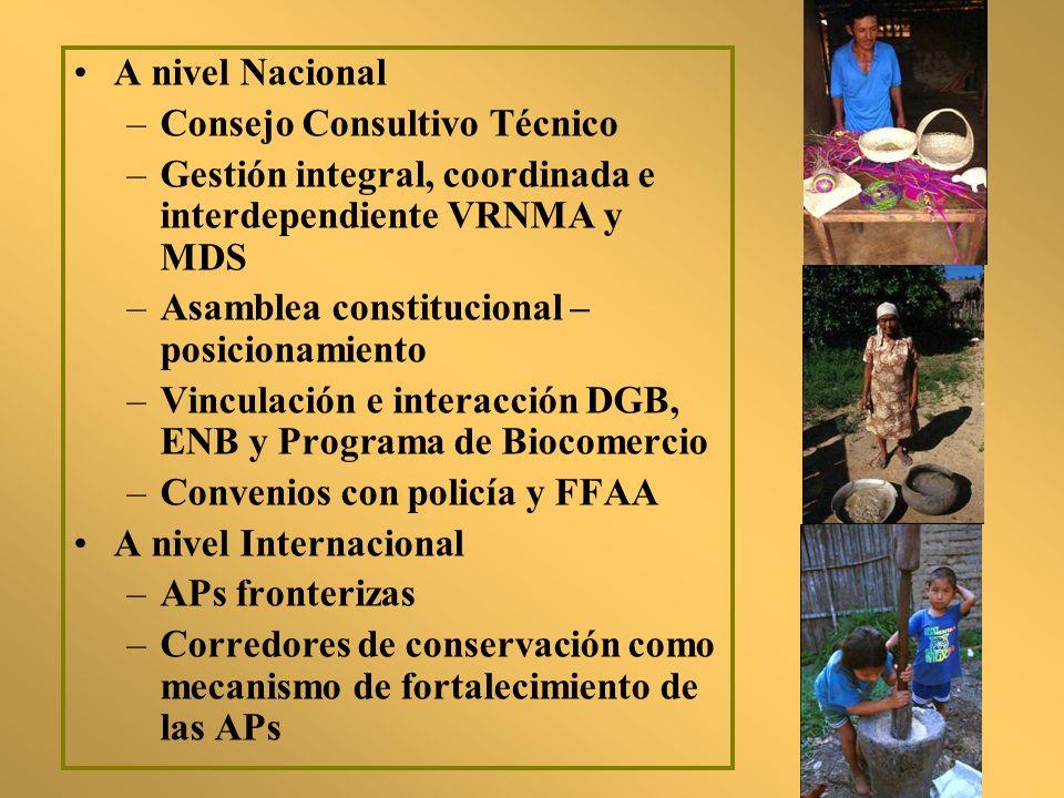 A nivel Nacional Consejo Consultivo Técnico. Gestión integral, coordinada e interdependiente VRNMA y MDS.