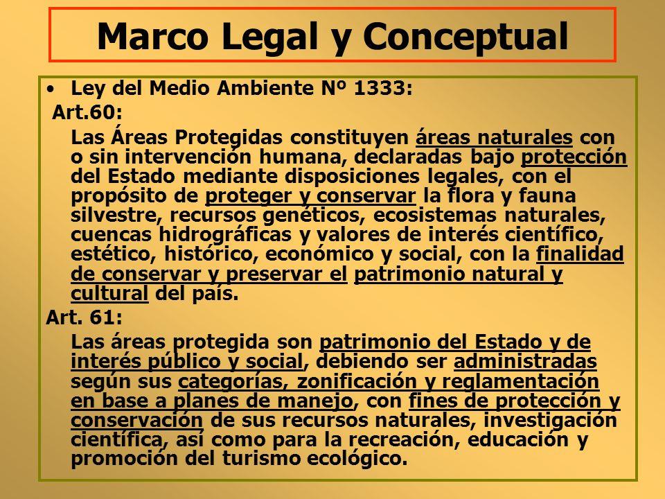Marco Legal y Conceptual