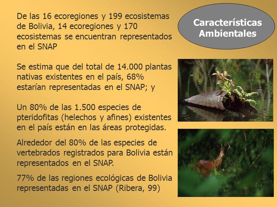 Características Ambientales