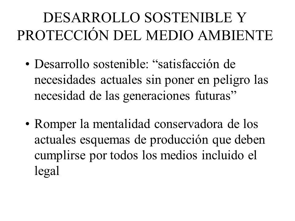 DESARROLLO SOSTENIBLE Y PROTECCIÓN DEL MEDIO AMBIENTE