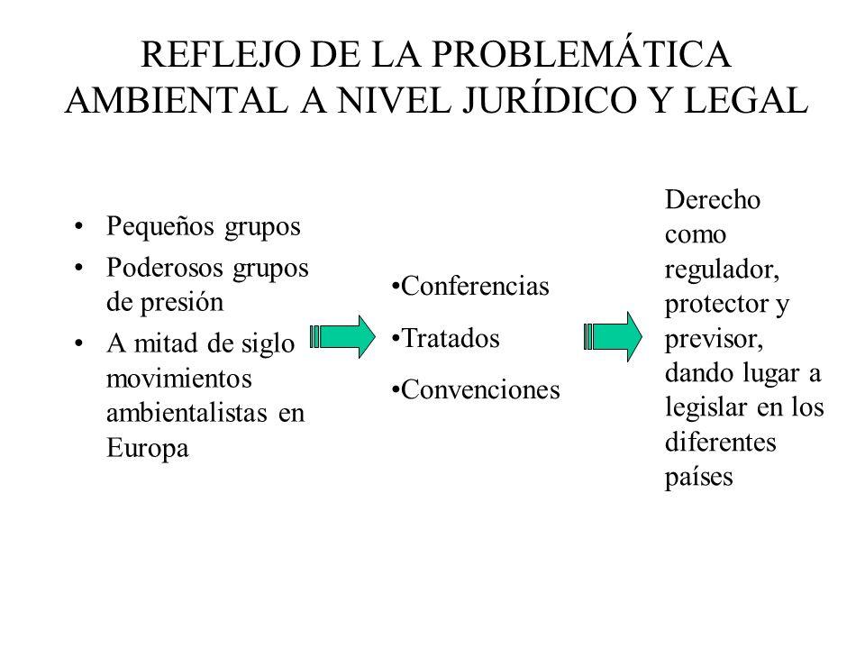 REFLEJO DE LA PROBLEMÁTICA AMBIENTAL A NIVEL JURÍDICO Y LEGAL