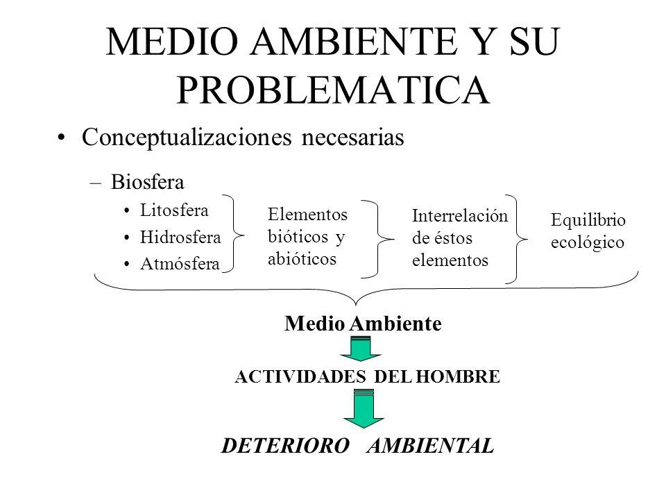 MEDIO AMBIENTE Y SU PROBLEMATICA
