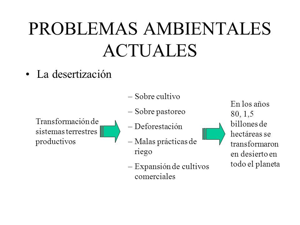 PROBLEMAS AMBIENTALES ACTUALES