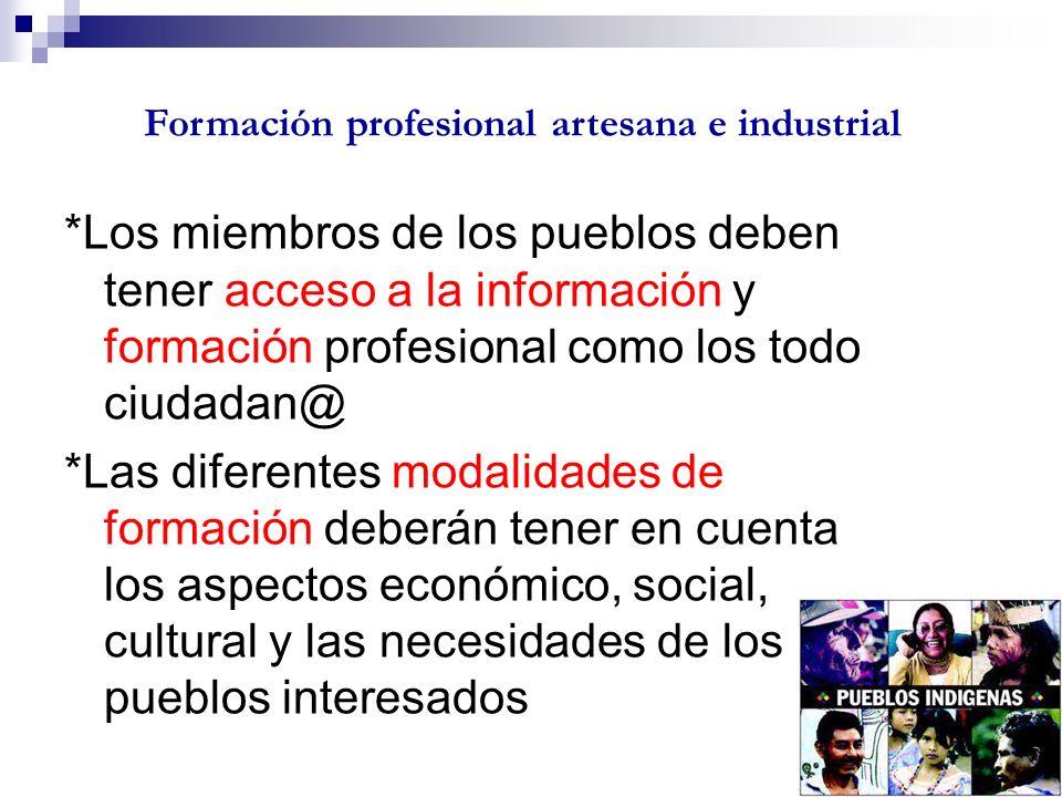 Formación profesional artesana e industrial