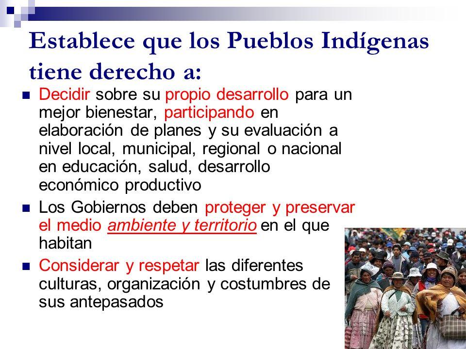 Establece que los Pueblos Indígenas tiene derecho a: