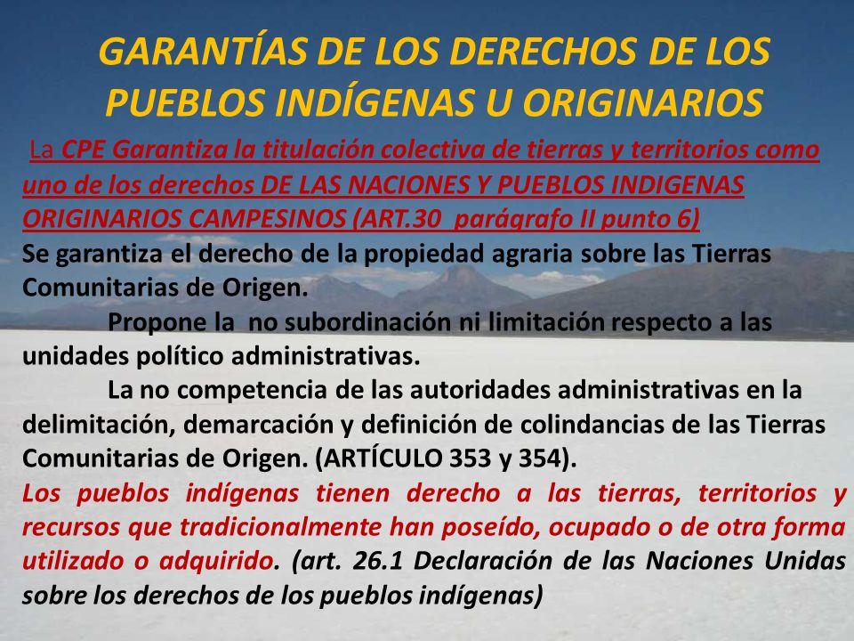 GARANTÍAS DE LOS DERECHOS DE LOS PUEBLOS INDÍGENAS U ORIGINARIOS