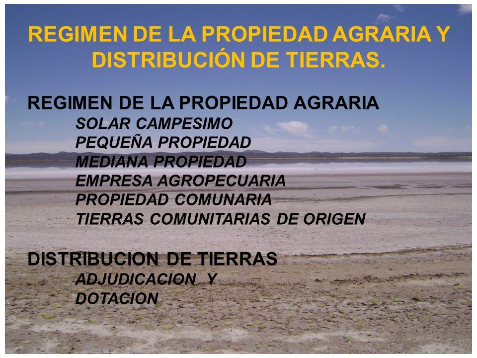 REGIMEN DE LA PROPIEDAD AGRARIA Y DISTRIBUCIÓN DE TIERRAS.
