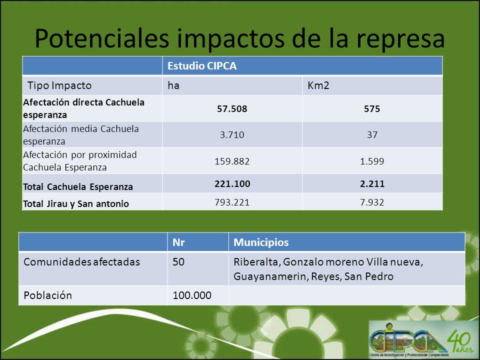 Potenciales impactos de la represa