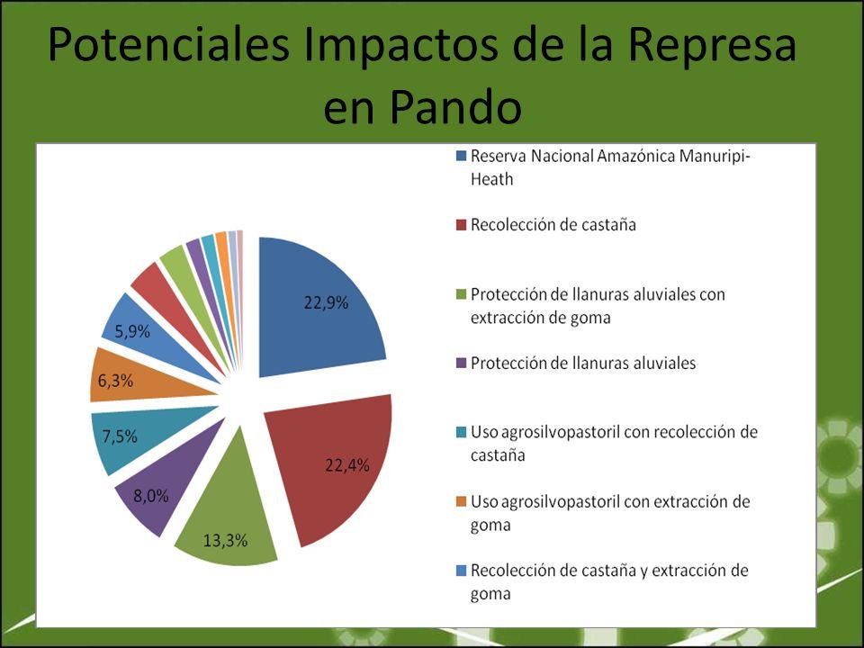 Potenciales Impactos de la Represa en Pando