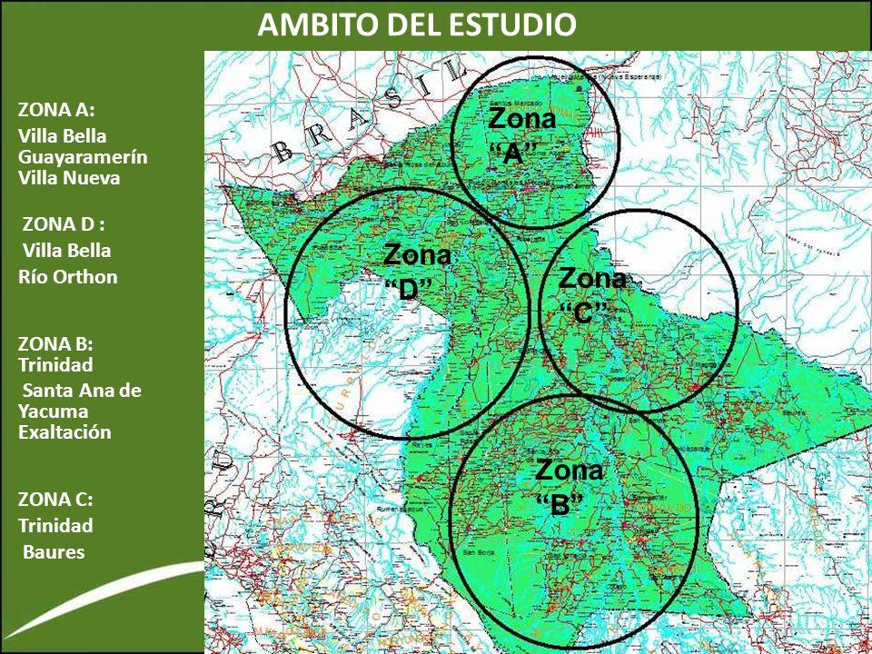 AMBITO DEL ESTUDIO Zona A Zona D Zona C Zona B ZONA A: