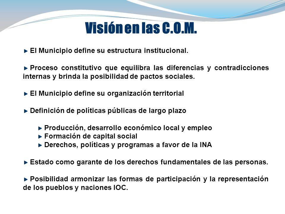 Visión en las C.O.M. El Municipio define su estructura institucional.