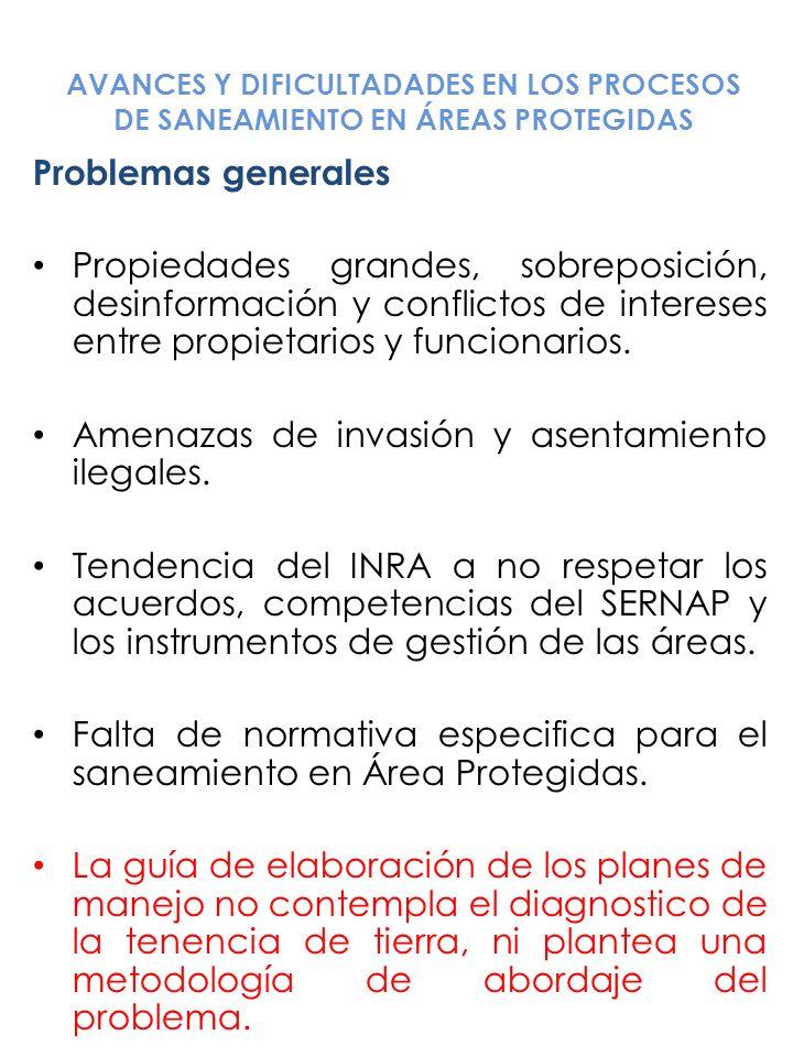 Amenazas de invasión y asentamiento ilegales.