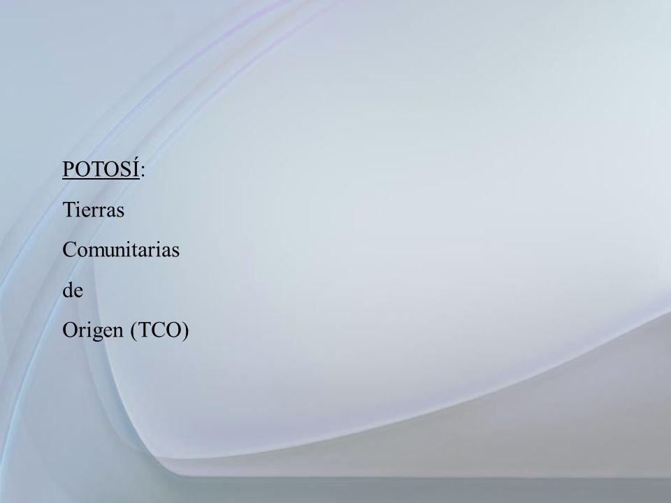 POTOSÍ: Tierras Comunitarias de Origen (TCO) 33