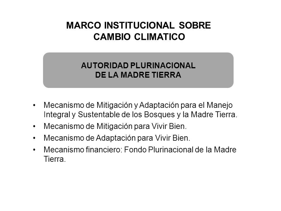 MARCO INSTITUCIONAL SOBRE AUTORIDAD PLURINACIONAL