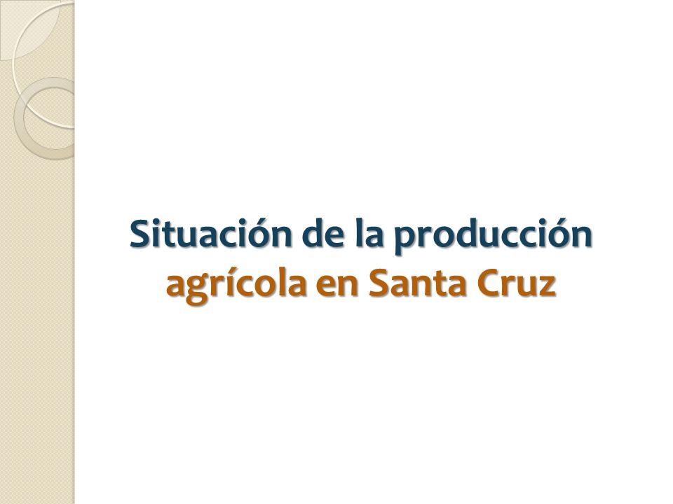 Situación de la producción agrícola en Santa Cruz