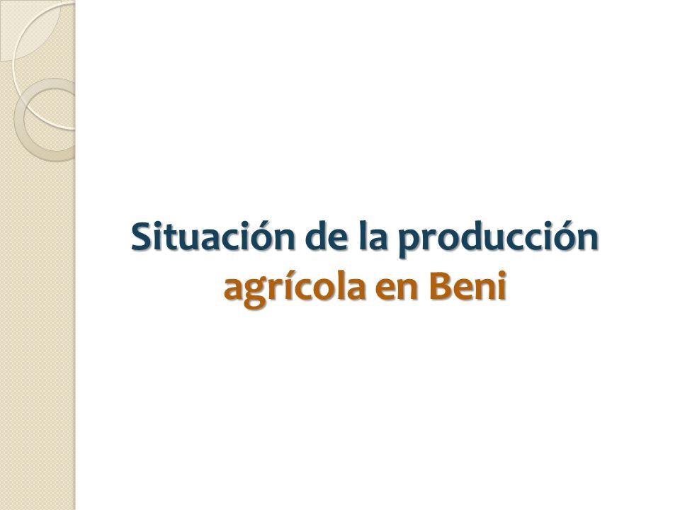 Situación de la producción agrícola en Beni