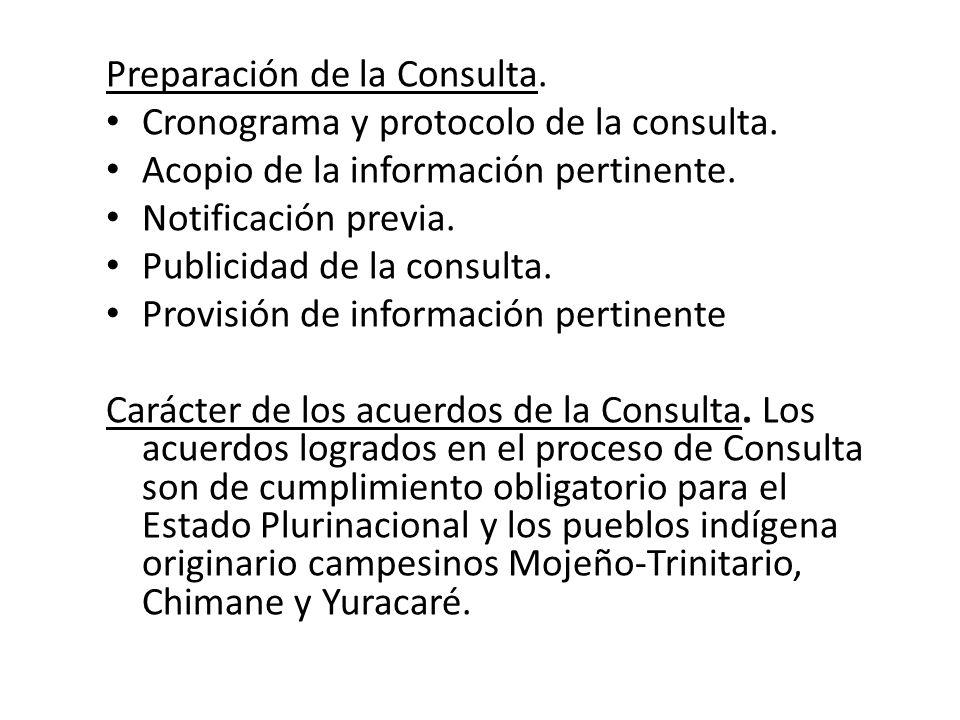 Preparación de la Consulta.