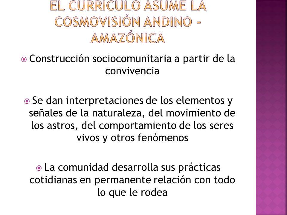 El currículo asume la cosmovisión andino - amazónica