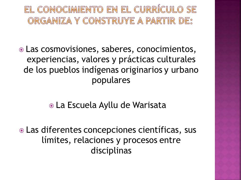 El conocimiento en el currículo se organiza y construye a partir de: