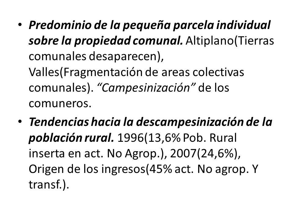 Predominio de la pequeña parcela individual sobre la propiedad comunal