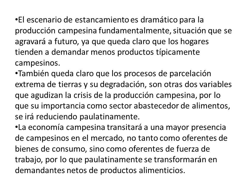 El escenario de estancamiento es dramático para la producción campesina fundamentalmente, situación que se agravará a futuro, ya que queda claro que los hogares tienden a demandar menos productos típicamente campesinos.