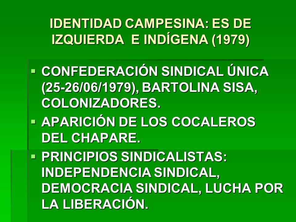 IDENTIDAD CAMPESINA: ES DE IZQUIERDA E INDÍGENA (1979)