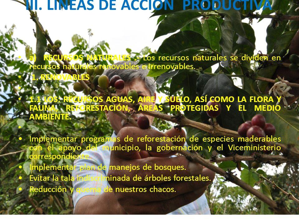 III. LINEAS DE ACCIÓN PRODUCTIVA
