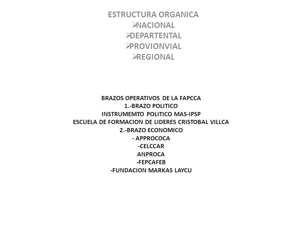 ESTRUCTURA ORGANICA NACIONAL DEPARTENTAL PROVIONVIAL REGIONAL