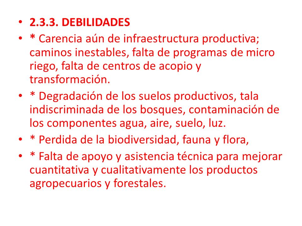 2.3.3. DEBILIDADES