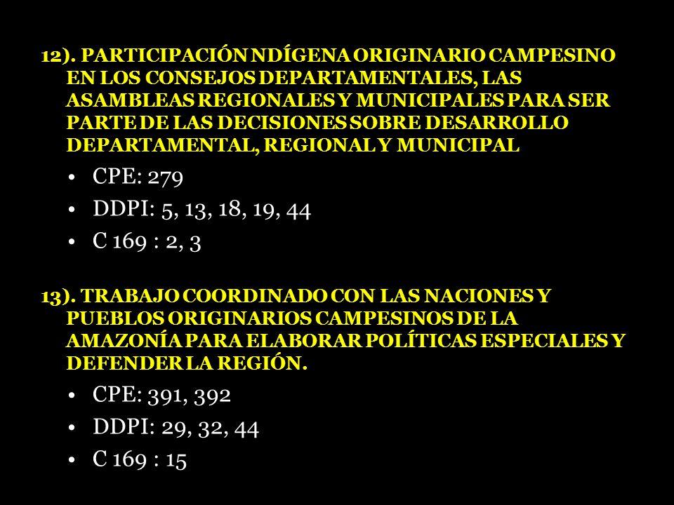 12). PARTICIPACIÓN NDÍGENA ORIGINARIO CAMPESINO EN LOS CONSEJOS DEPARTAMENTALES, LAS ASAMBLEAS REGIONALES Y MUNICIPALES PARA SER PARTE DE LAS DECISIONES SOBRE DESARROLLO DEPARTAMENTAL, REGIONAL Y MUNICIPAL