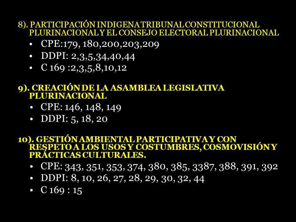 8). PARTICIPACIÓN INDIGENA TRIBUNAL CONSTITUCIONAL PLURINACIONAL Y EL CONSEJO ELECTORAL PLURINACIONAL