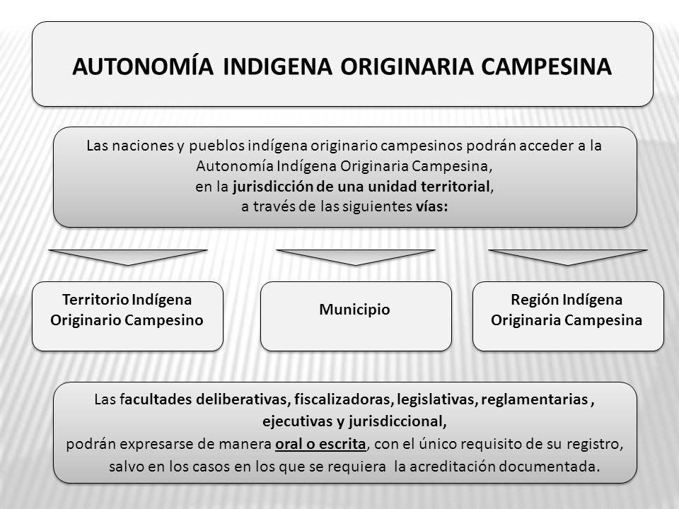 AUTONOMÍA INDIGENA ORIGINARIA CAMPESINA