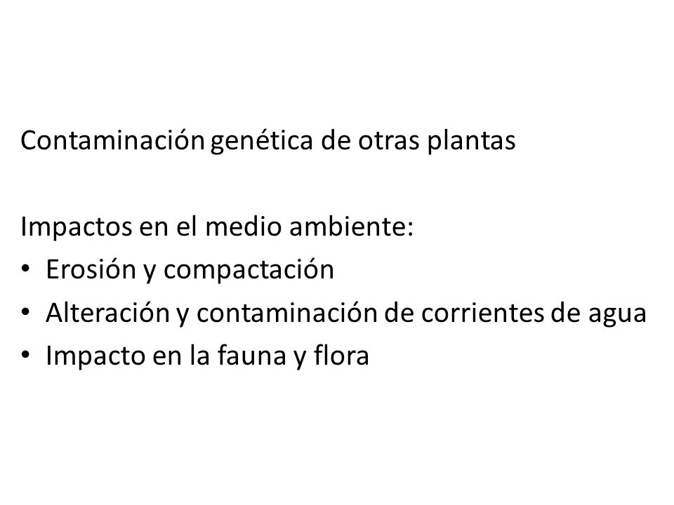 Contaminación genética de otras plantas