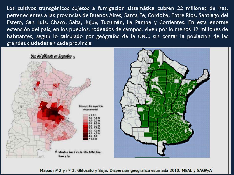 Los cultivos transgénicos sujetos a fumigación sistemática cubren 22 millones de has.