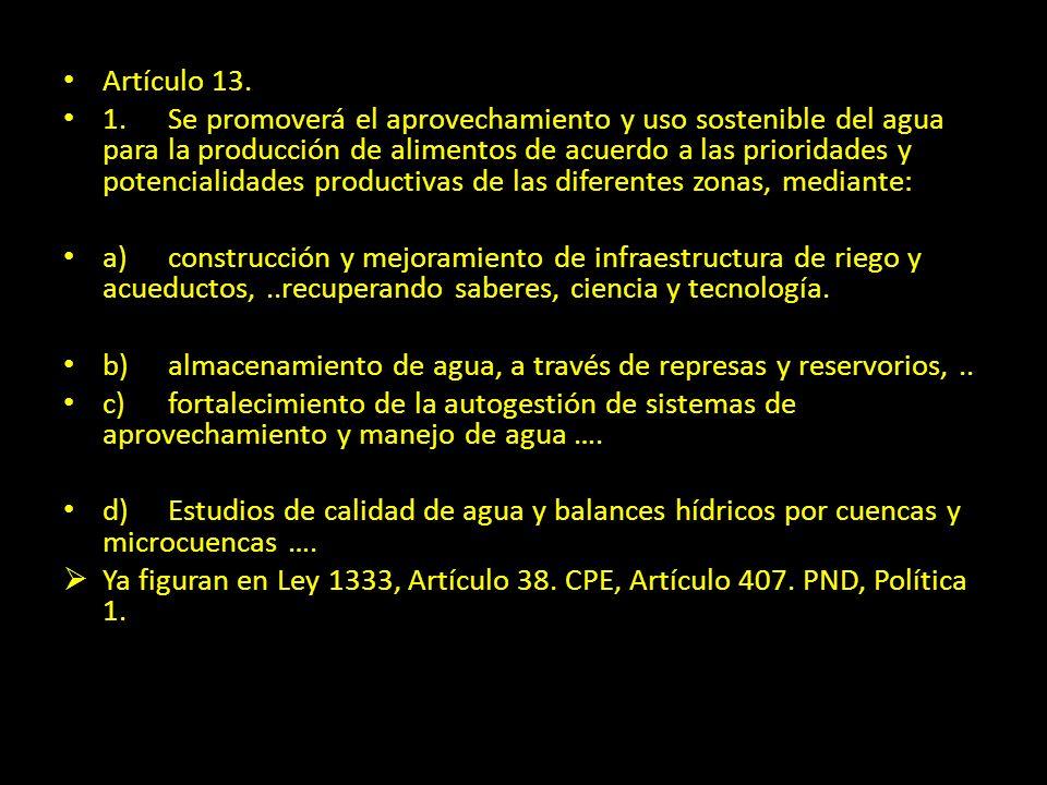Artículo 13.