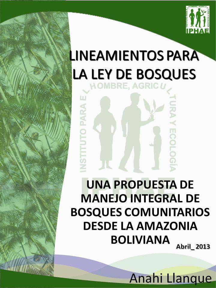 LINEAMIENTOS PARA LA LEY DE BOSQUES