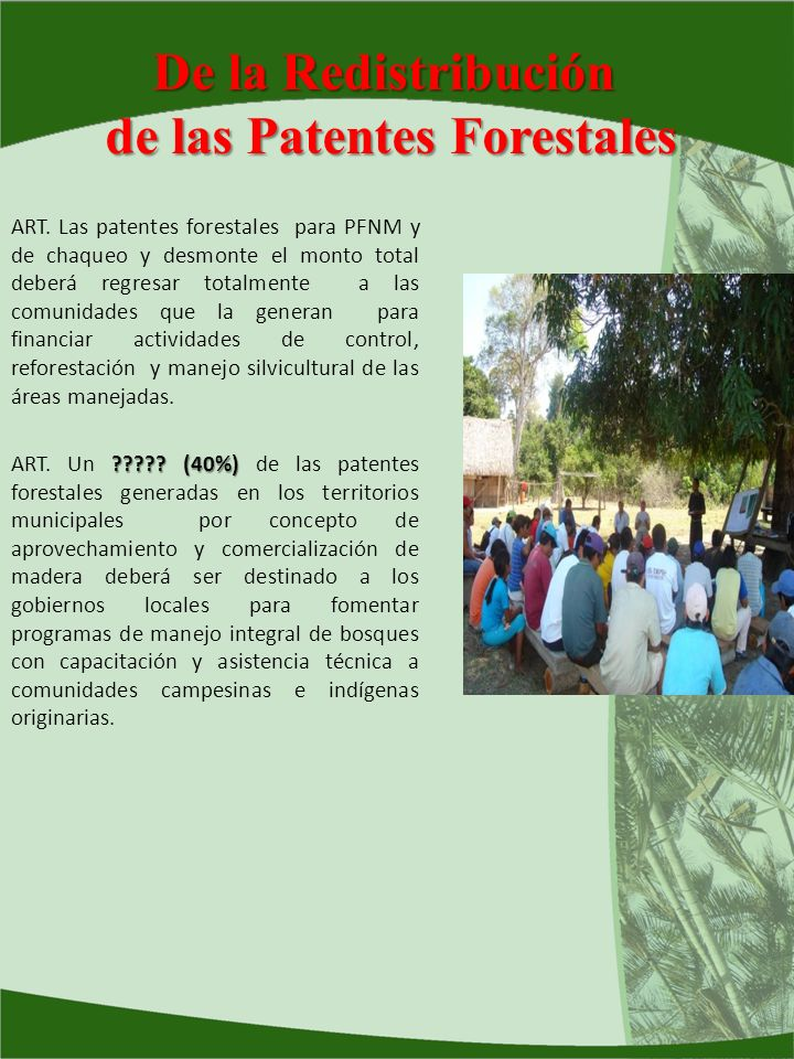 de las Patentes Forestales