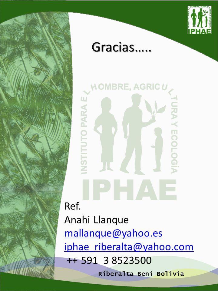 Gracias….. Ref. Anahi Llanque mallanque@yahoo.es