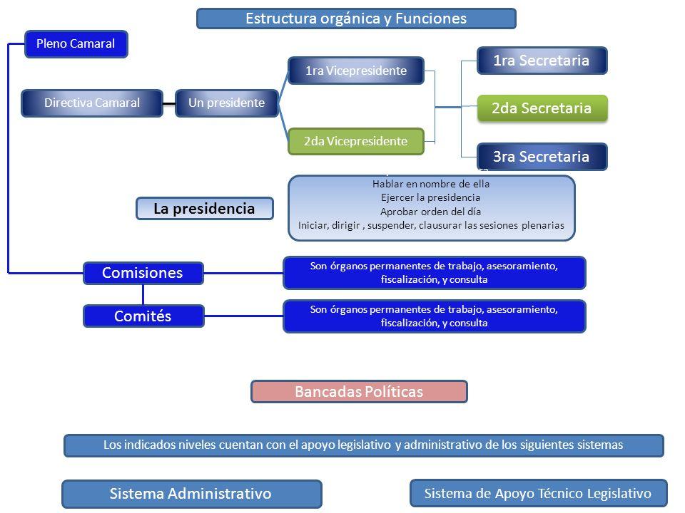 Estructura orgánica y Funciones