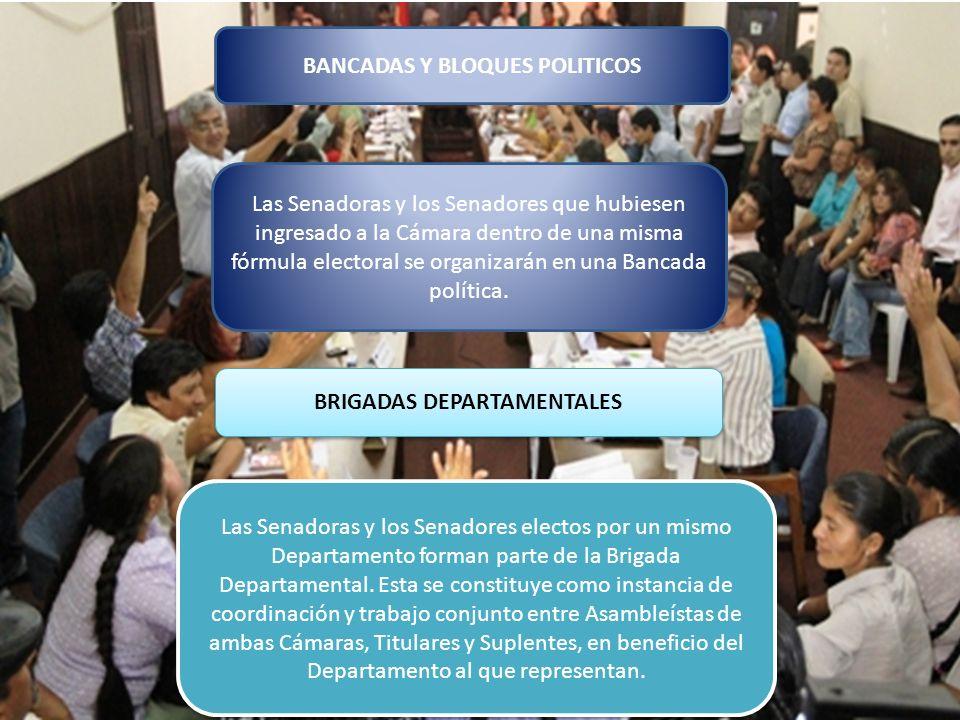 BANCADAS Y BLOQUES POLITICOS BRIGADAS DEPARTAMENTALES
