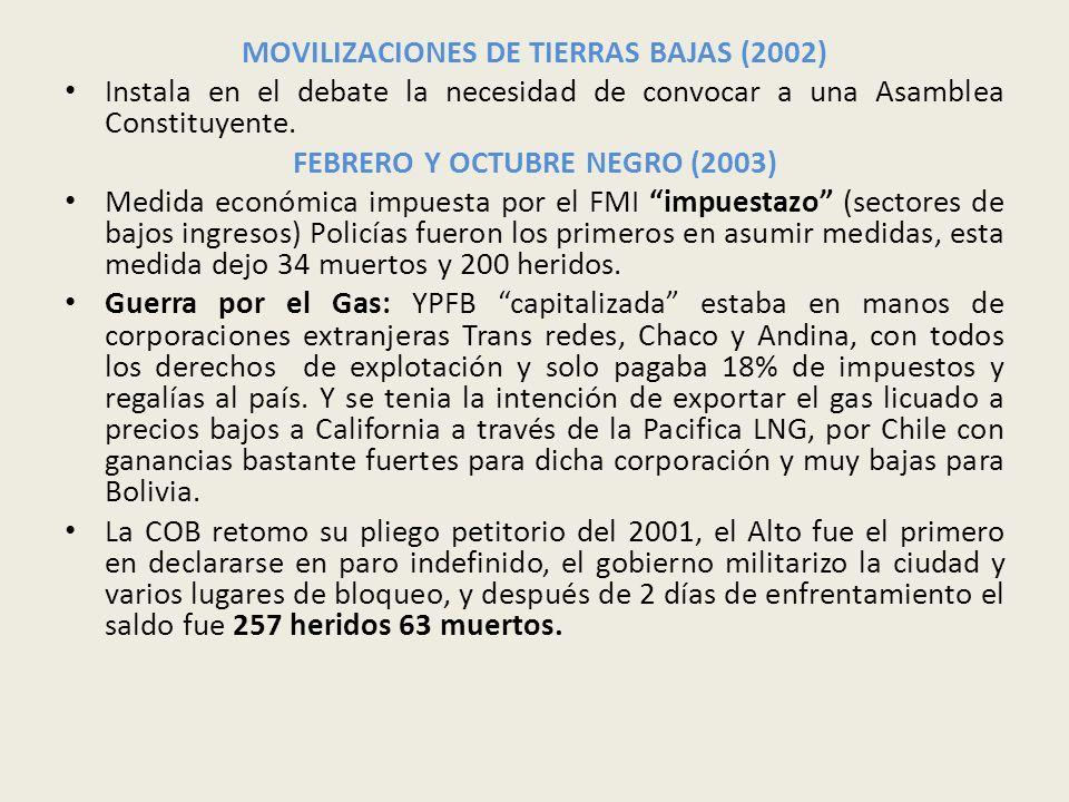 MOVILIZACIONES DE TIERRAS BAJAS (2002)