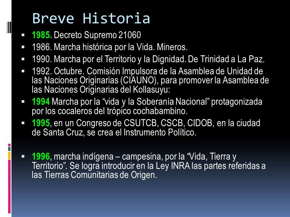 Breve Historia 1985. Decreto Supremo 21060