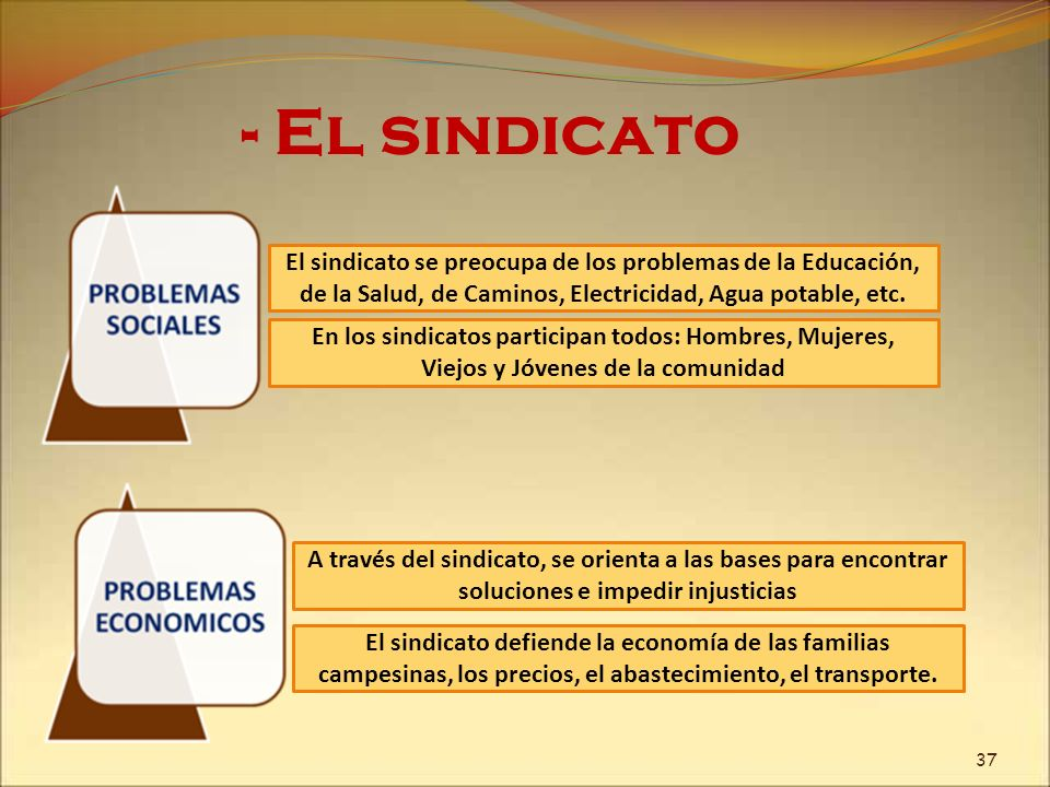 - El sindicato El sindicato se preocupa de los problemas de la Educación, de la Salud, de Caminos, Electricidad, Agua potable, etc.