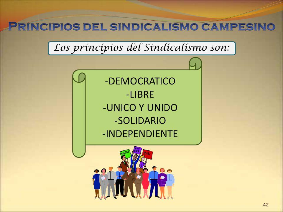 Los principios del Sindicalismo son: