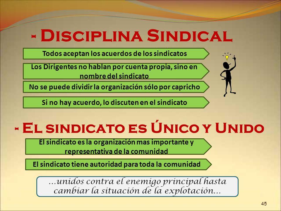- Disciplina Sindical - El sindicato es Único y Unido