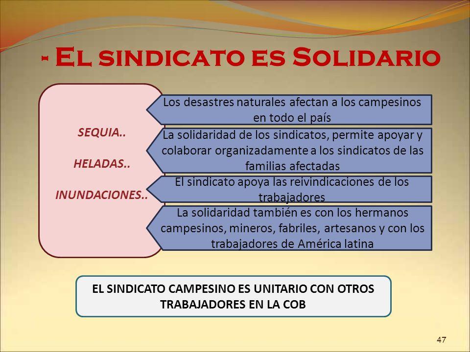 EL SINDICATO CAMPESINO ES UNITARIO CON OTROS TRABAJADORES EN LA COB
