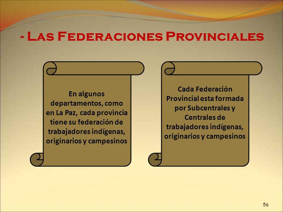 - Las Federaciones Provinciales