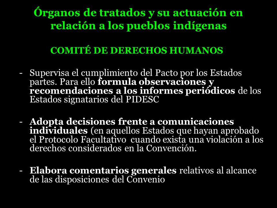 Órganos de tratados y su actuación en relación a los pueblos indígenas